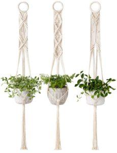 simple macrame plant hanger
